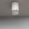 A Fine French 1950's Double Cylinder Flush Mount by Perzel