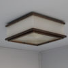 A Fine French Art Deco Bronze, Lucite and Glass Ceiling Lights