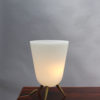 French Midcentury Glass and Bronze Table Lamp by Perzel