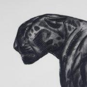 1794-Gravure Jouve00007